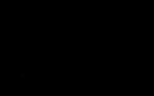 greenhippo-logo
